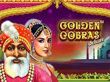 Golden Cobras